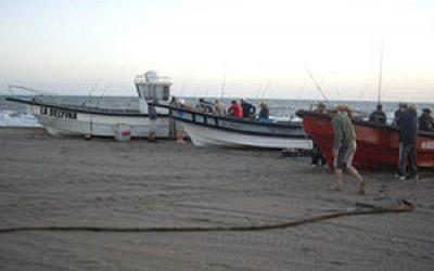 pesca en pehuen co